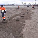 FOVASA refuerza la limpieza de las playas de València debido al aumento de usuarios los fines de semana